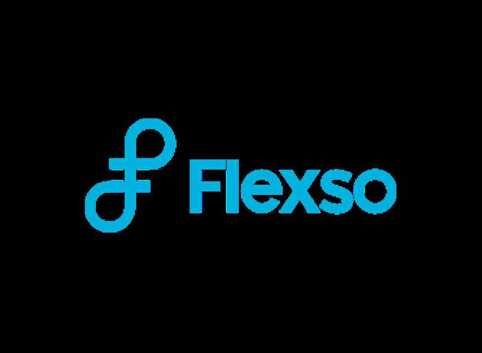 Logo Flexso ok